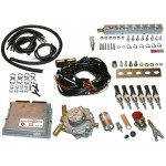 Пропановый 6 цил. к-кт BRC Sequent Plug&Drive  до 200 л.с. рядный двигатель